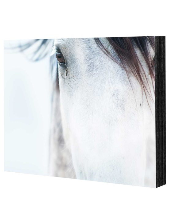 premium mounted photo prints