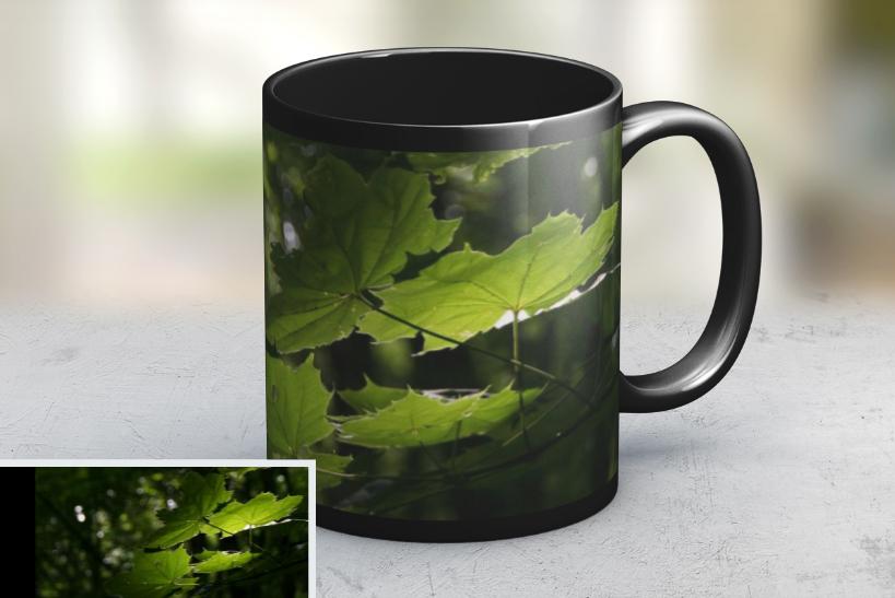 leaf photo mug