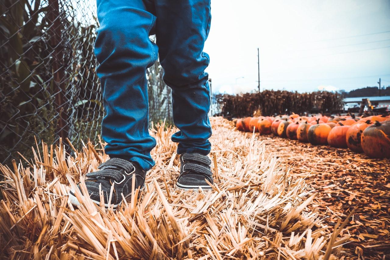 children hay pumpkin patch