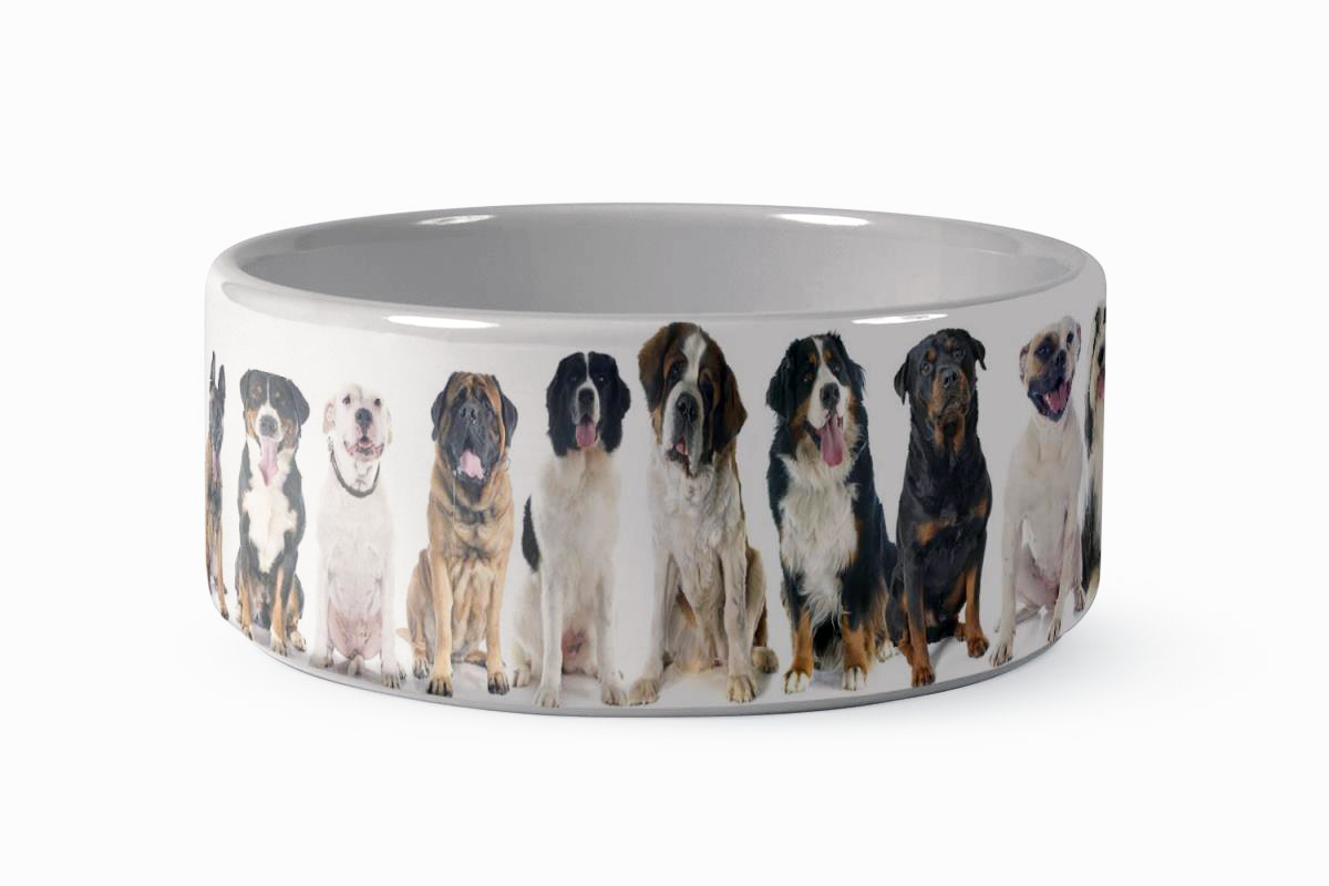 Custom Photo Gift Ideas for Your Pet 4
