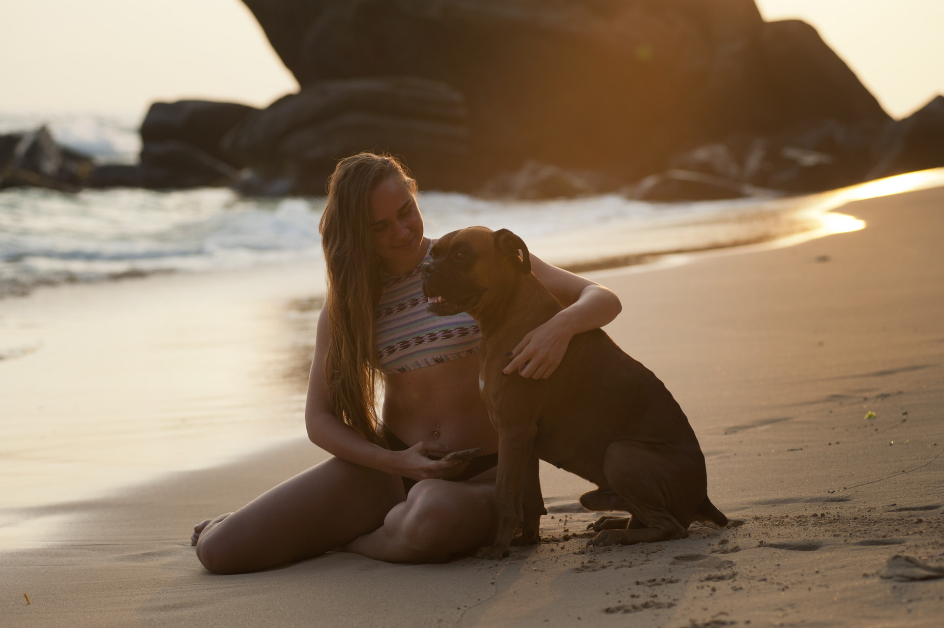 dog on the beach with owner