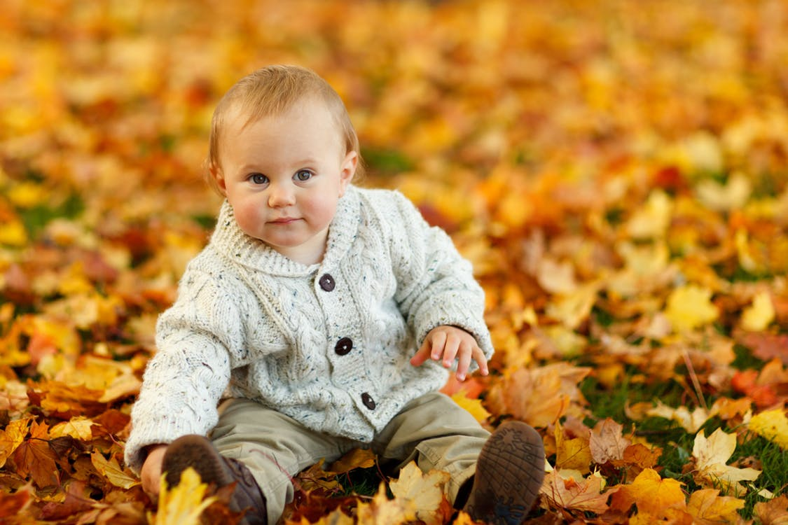 fall baby photo