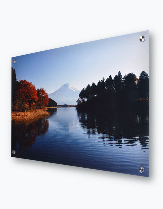 Premium Metal Prints with Standoff Mounts 1
