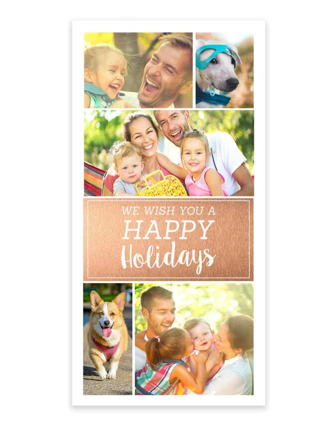 happy holidays from the family photo card