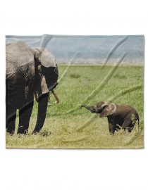 baby elephant custom photo blanket