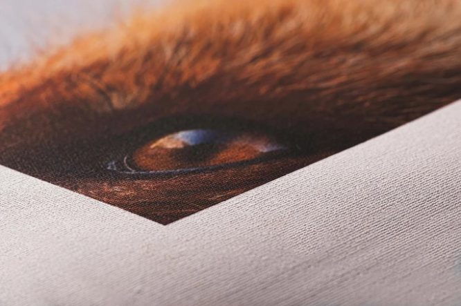 Fine Art Canvas - Custom Order Only 3